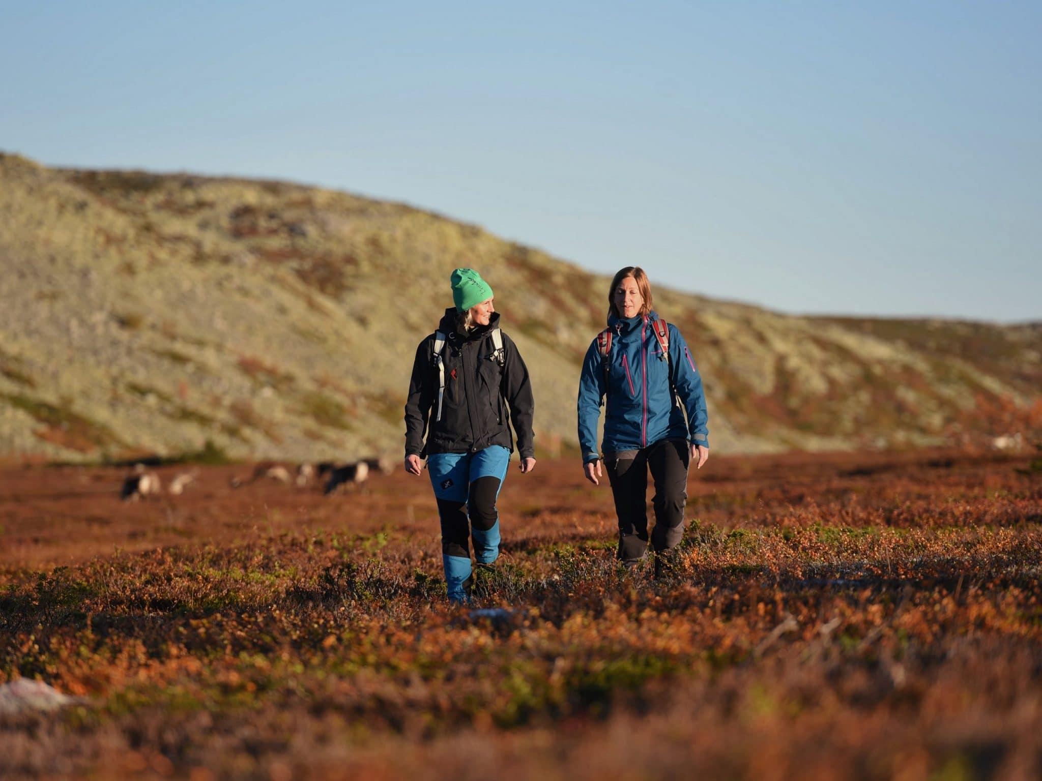 Två kvinnor vandrar på fjället i Vemdalen en höstdag