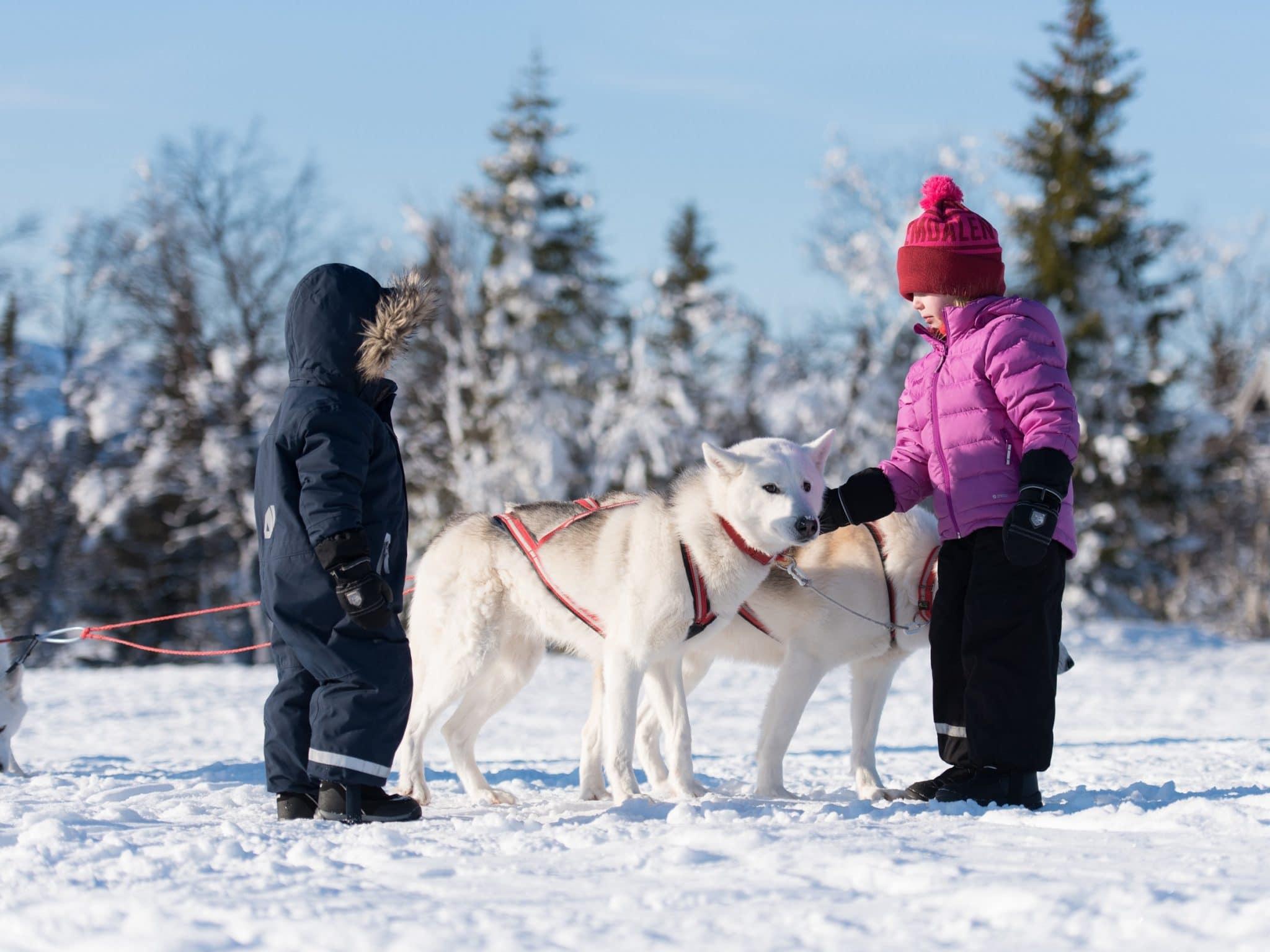 Two children pat a dog in snow landscape in Vemdalen