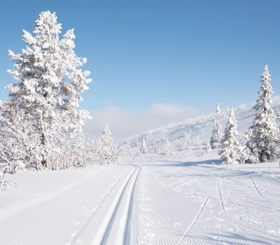 Cross-country skiing trails in Vemdalen